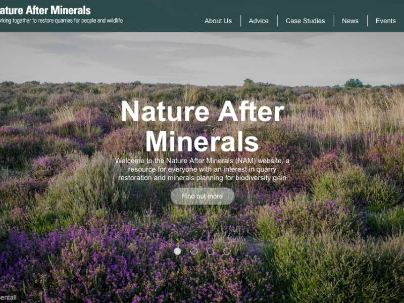 Nature After Minerals